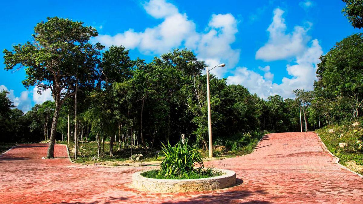 Tulum Land for Sale scene image 7