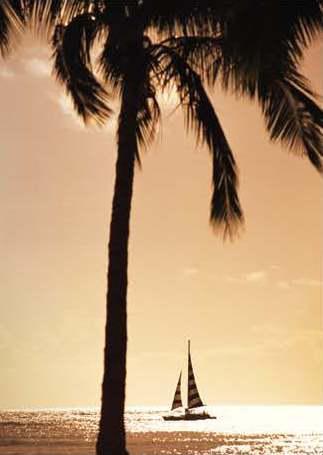 Foto Departamento en Venta en  Puerto Cancún,  Cancún   SLS Harbour Beach Cancún,  Departamento en venta 3 recámaras