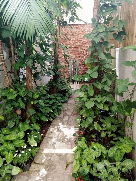 Foto Departamento en Venta en  Botanico,  Palermo  al 3300