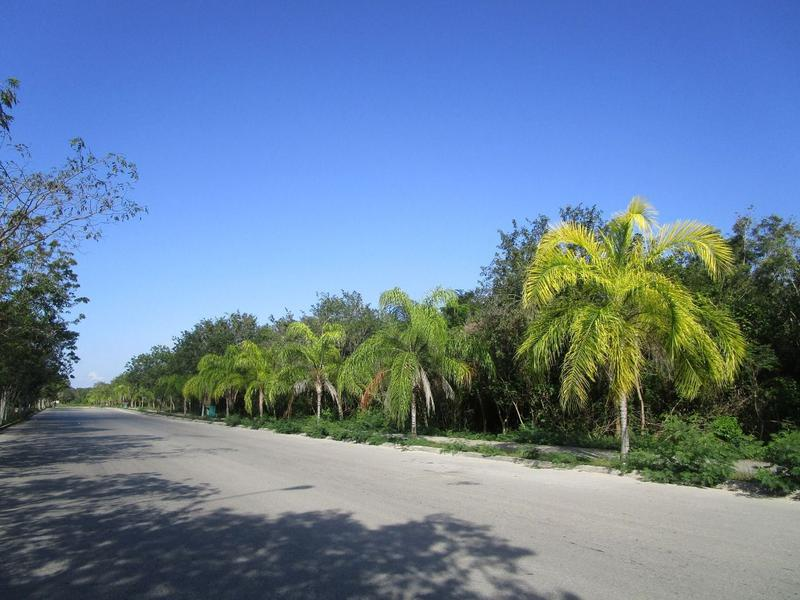 Foto Terreno en Venta en  Solidaridad ,  Quintana Roo   LOTE COMERCIAL EN LOS ARRECIFES PLAYA DEL CARMEN C2377