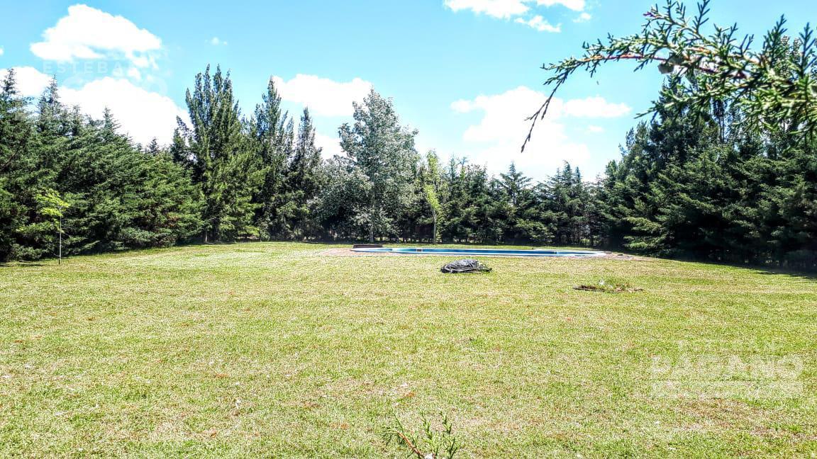 Foto Terreno en Venta en  Villa Parque Sicardi,  La Plata  652 e 1 y 2