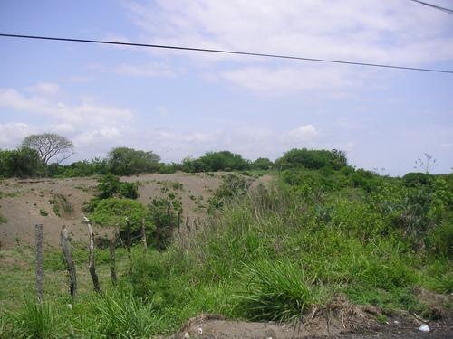 Foto Terreno en Venta en  Renacimiento,  Veracruz  TERRENO EN VENTA KM. 13.5 VERACRUZ NORTE