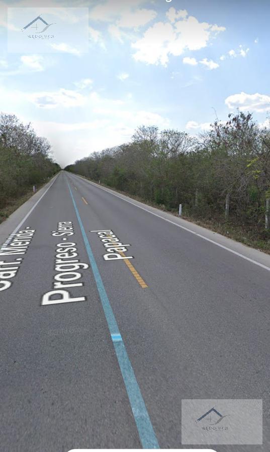 Foto Terreno en Venta en  Comisaría Sierra Papacal,  Mérida    Lote en venta sobre carretera Komchen a Sierra Papakal kilometro 1 de la carretera Federal Mérida a Progreso