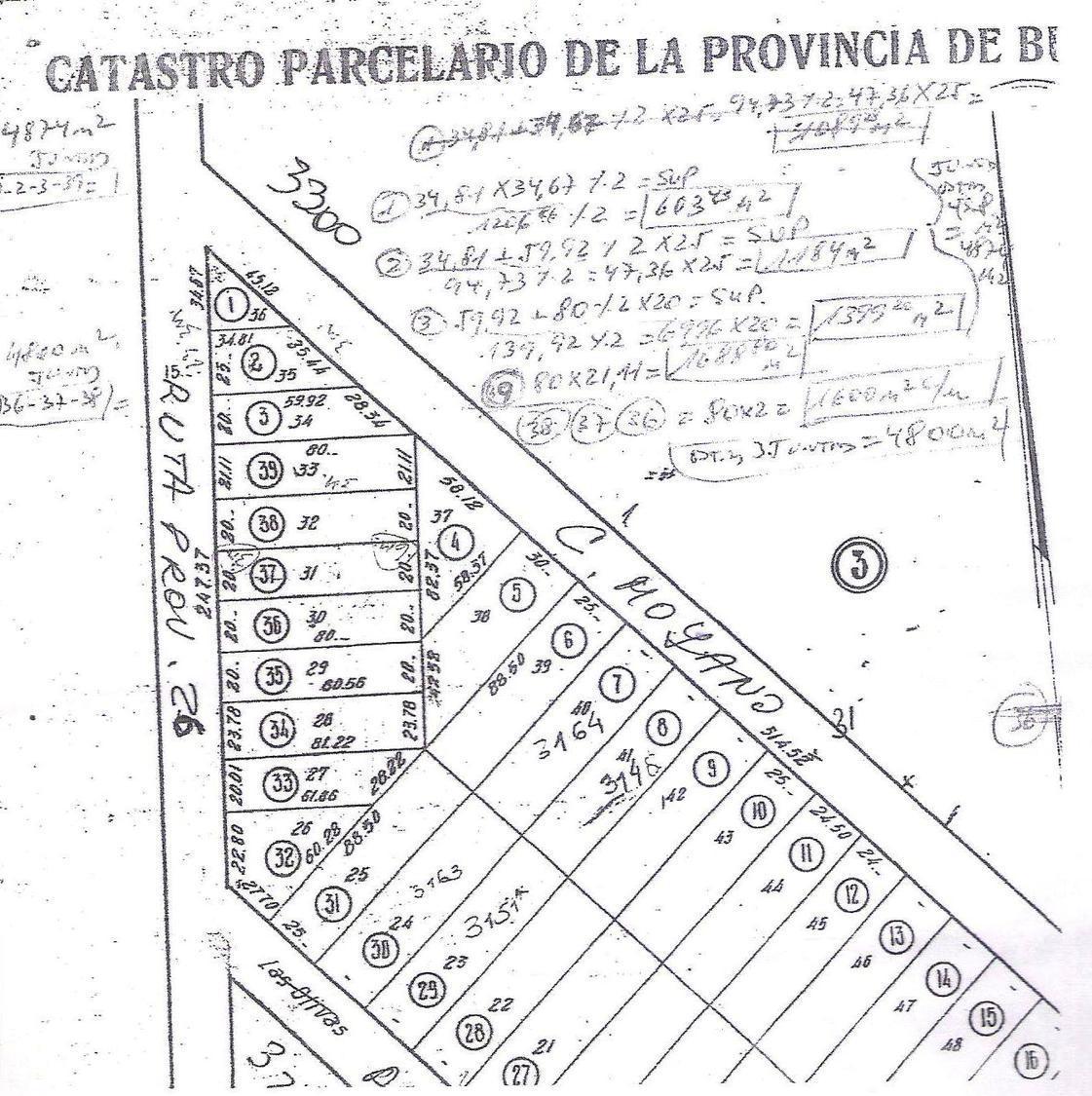 Terreno-Venta-Manuel Alberti-RUTA Nº 26 (AV. CONSTITUCION) Y MOYANO - 10.000 M2 RUTA 26 Y MOYANO - PILAR