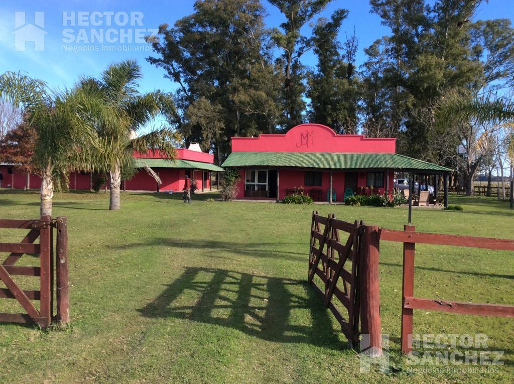 Foto Campo en Venta en  General Rodriguez ,  G.B.A. Zona Oeste  Ruta 6