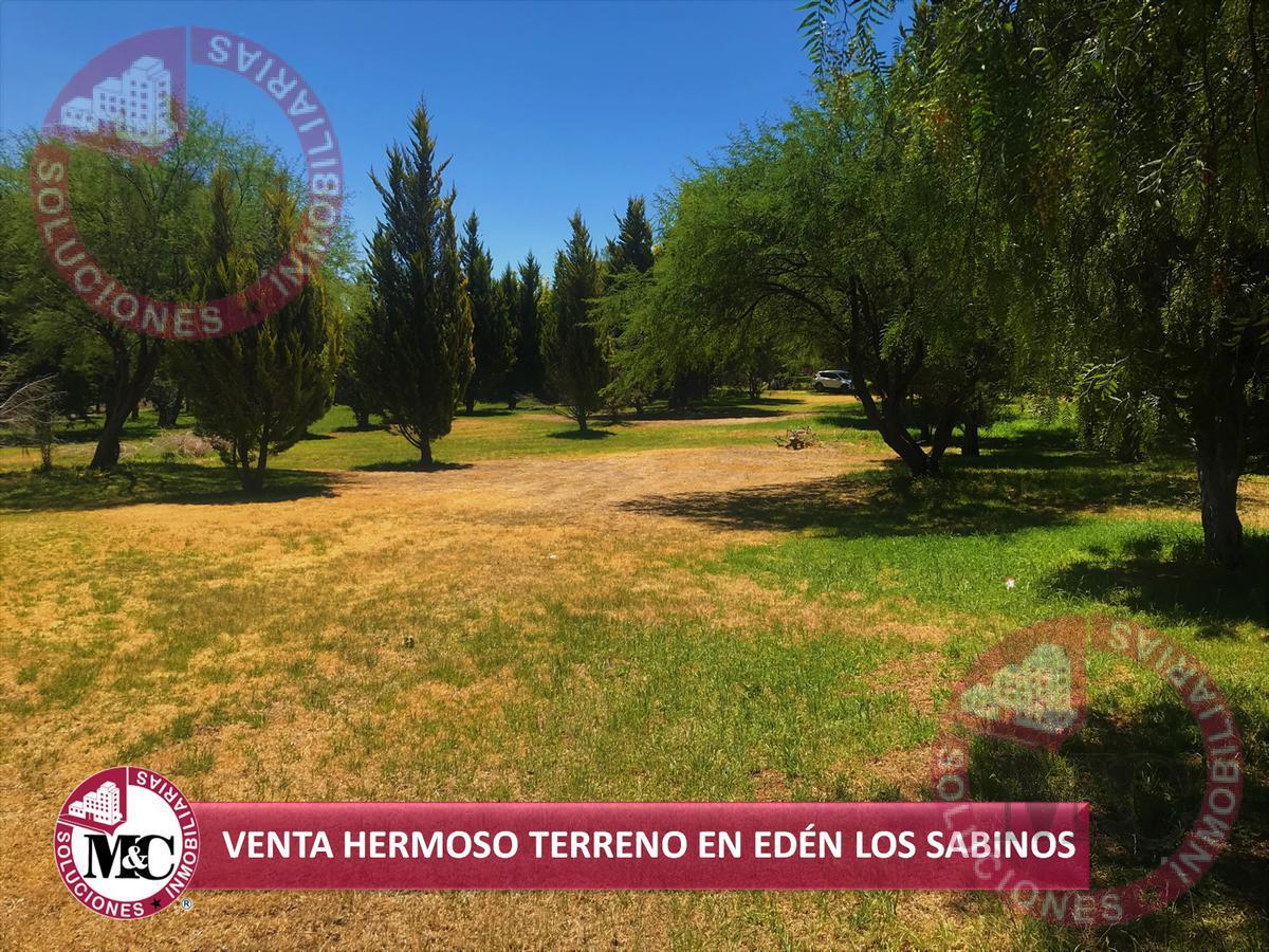 Foto Terreno en Venta en  Rancho o rancheria Salto de los Salados,  Aguascalientes  M C Ofrece Fantástico Terreno en Edén Los Sabinos