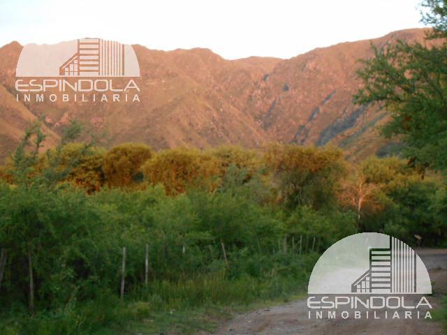 Foto Terreno en Venta    en  Cortaderas,  Chacabuco  Ruta 1 km 15