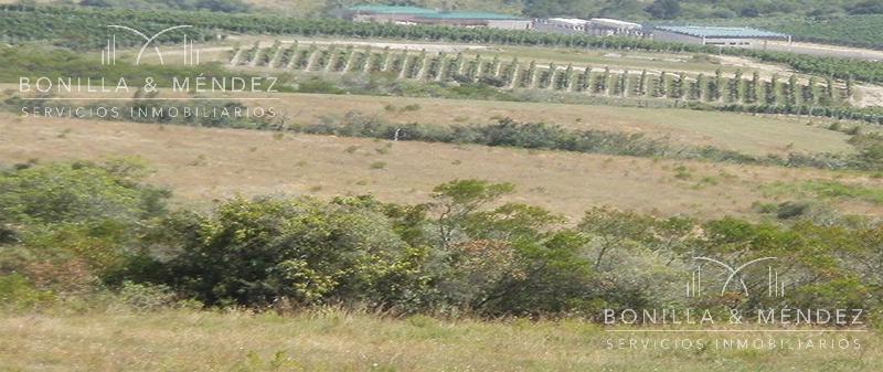 Foto Campo en Venta en  Otras ,  Maldonado  Camino Arco del Sol al 1000