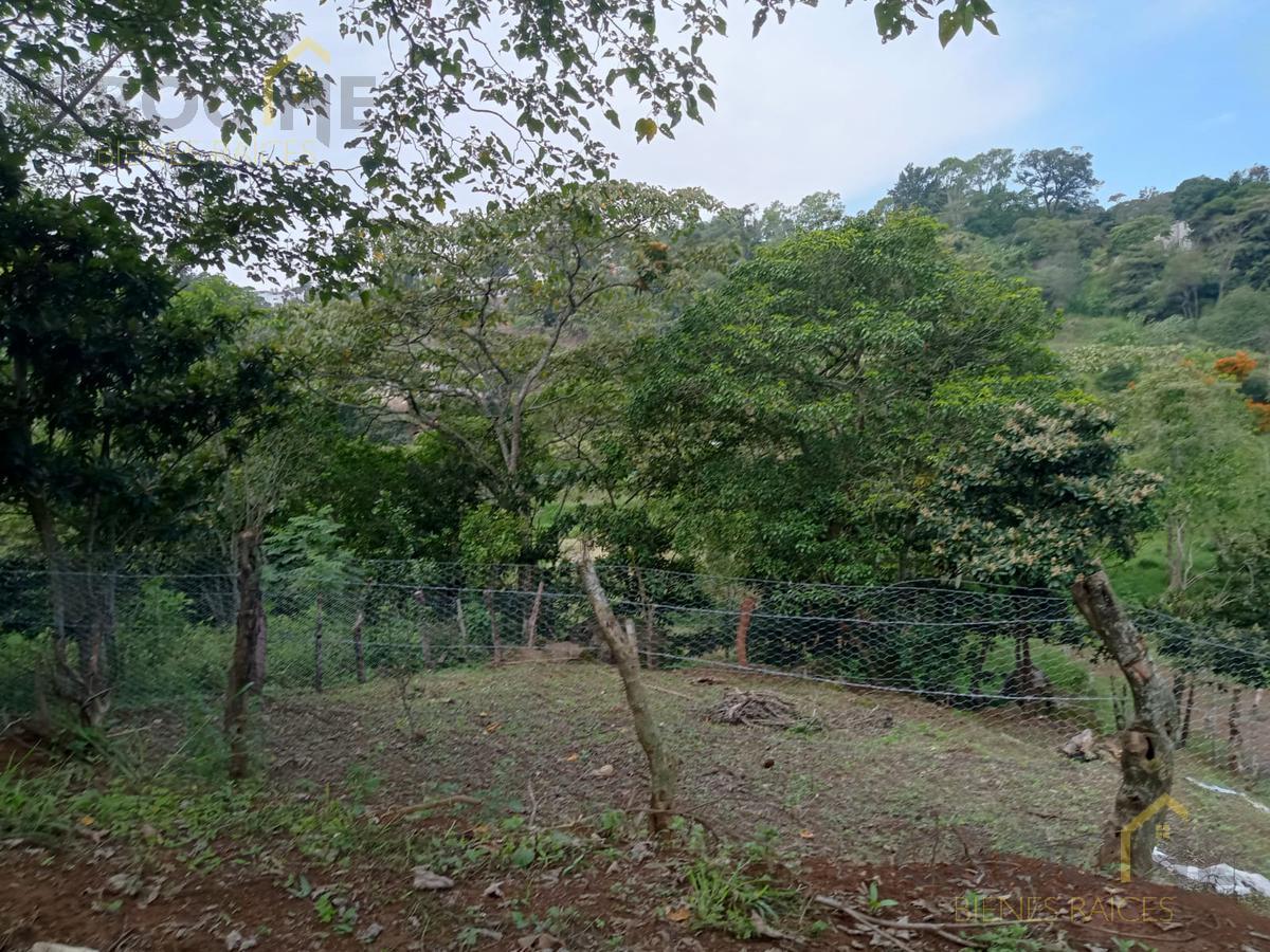 Foto Terreno en Venta en  Xalapa ,  Veracruz  Venta de terreno en zona Animas cercano a Av. Chedraui Caram y calle Prol. Sebastian Bach