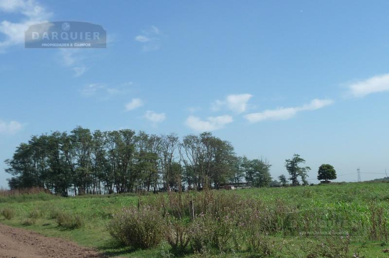 Foto Campo en Venta en  San Vicente ,  G.B.A. Zona Sur  150 HA. SAN VICENTE