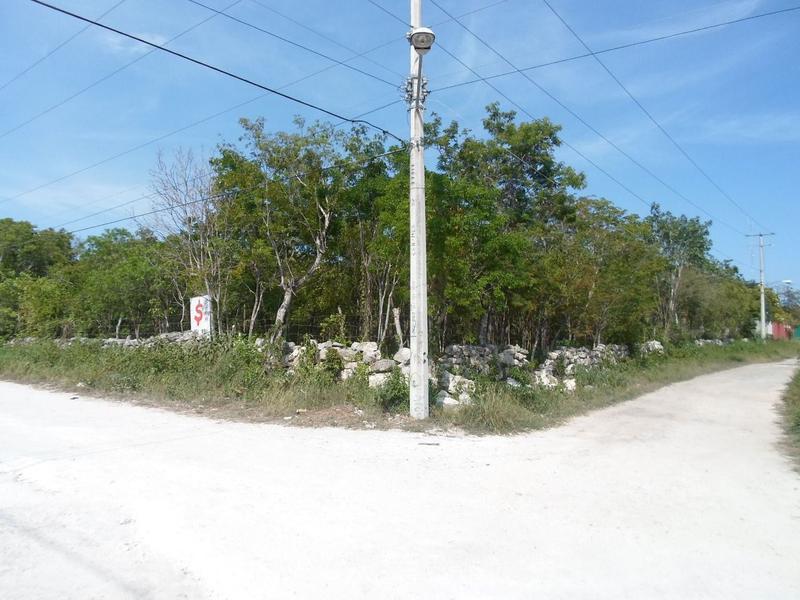 Foto Terreno en Venta en  Tulum Centro,  Tulum  Se Vende terreno en Tulum