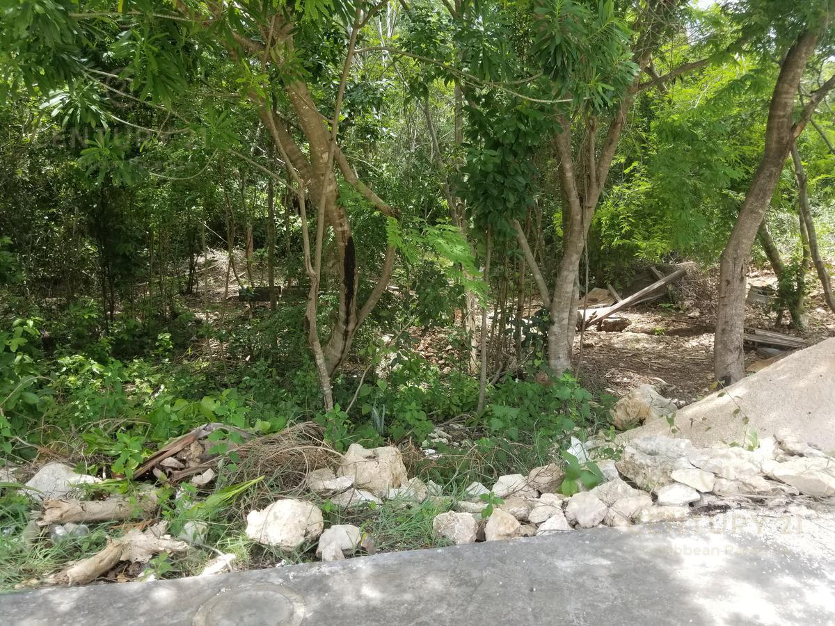 Fraccionamiento Encuentro Land for Sale scene image 4