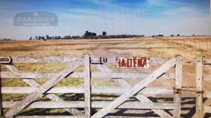 Foto Campo en Venta en  Roque Perez,  Roque Perez  CAMPO LA ELENA