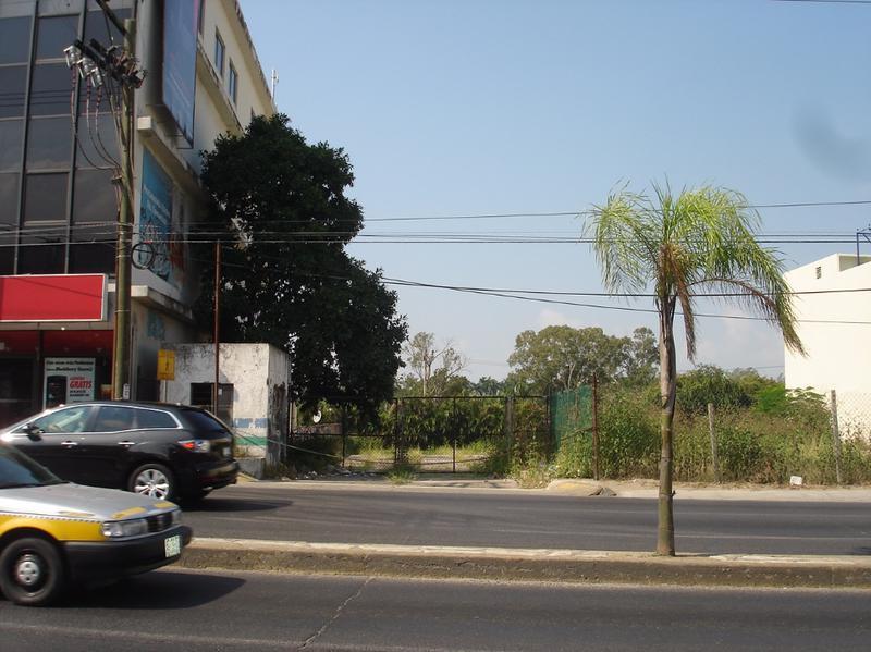Foto Terreno en Renta en  Sierra Morena,  Tampico  TERRENO EN  AVE. HIDALGO EN RENTA