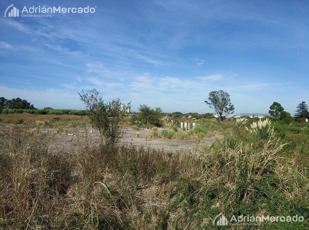 Foto Terreno en Venta en  Zarate,  Zarate  Autovía 6, km 86 - Zárate