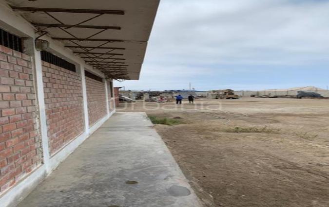 Foto Terreno en Alquiler | Venta en  Lurín,  Lima  Lurín