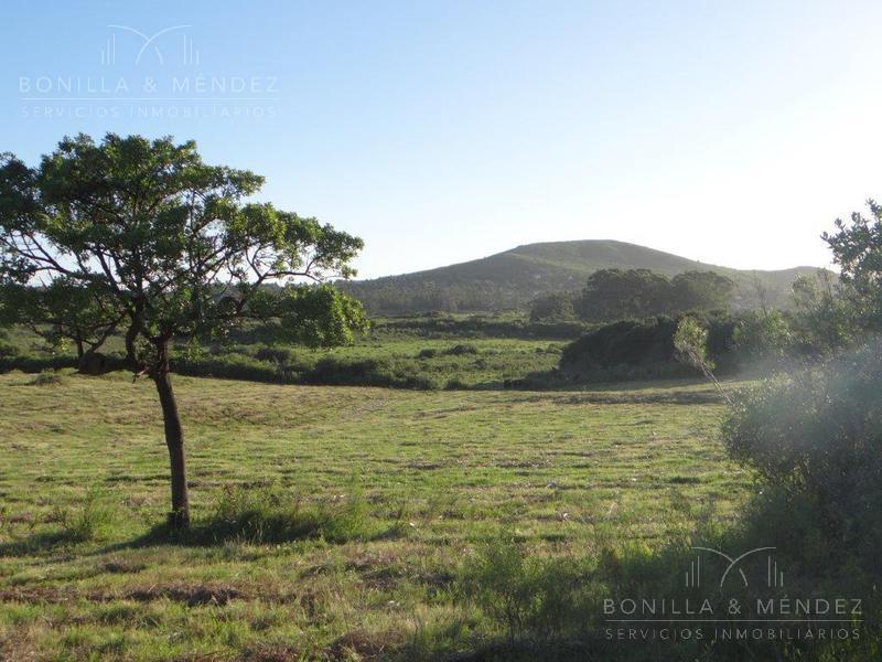 Foto Campo en Venta en  Piriápolis ,  Maldonado  Chacra en Ruta 73 Playa Hermosa Cerro Pan de Azúcar