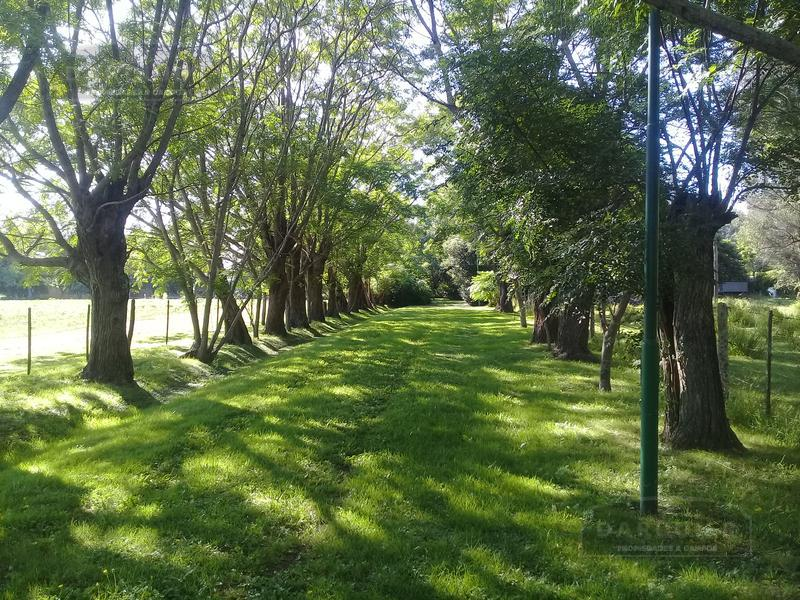 Foto Campo en Venta en  Bme Bavio Gral Mansilla,  Magdalena  78 HA. BAVIO