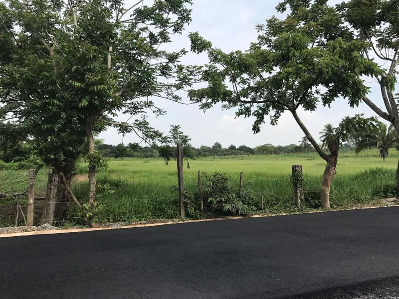 Foto Terreno en Venta en  Rancho o rancheria Barrancas,  Cosoleacaque  Terreno en Venta, Carretera Barrancas- Tereftalatos, Cosoleacaque, Ver