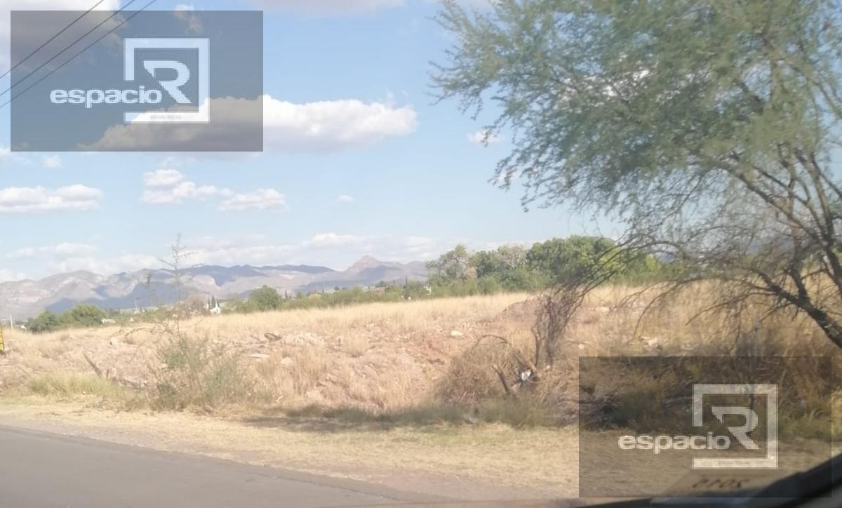 Foto Terreno en Renta en  Robinson,  Chihuahua  TERRENO EN RENTA SOBRE CARRETERA A ALDAMA