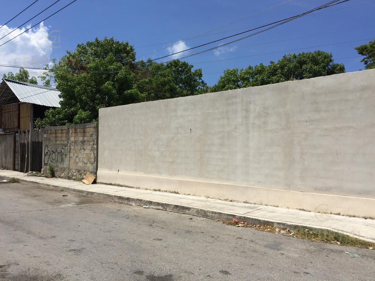 Playa del Carmen Storage for Sale scene image 2
