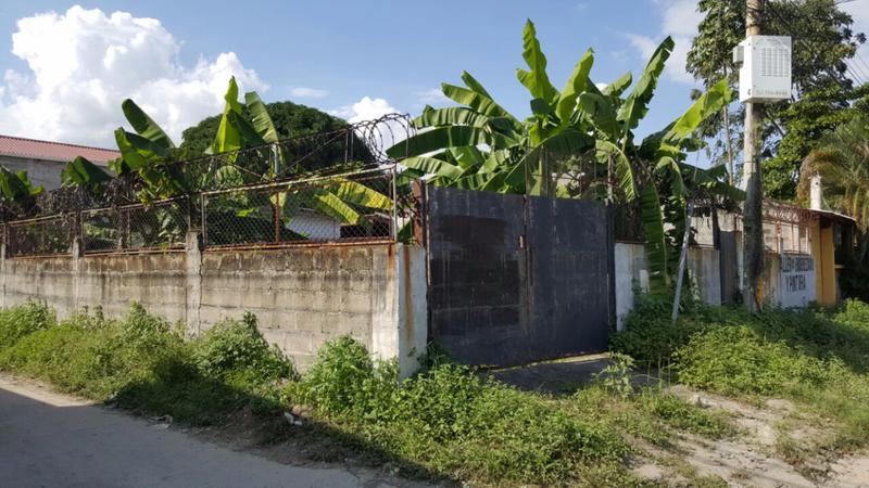 Foto Terreno en Renta en  Villa Florencia,  San Pedro Sula  Terreno de esquina en venta y renta en Colonia. Villa Florencia
