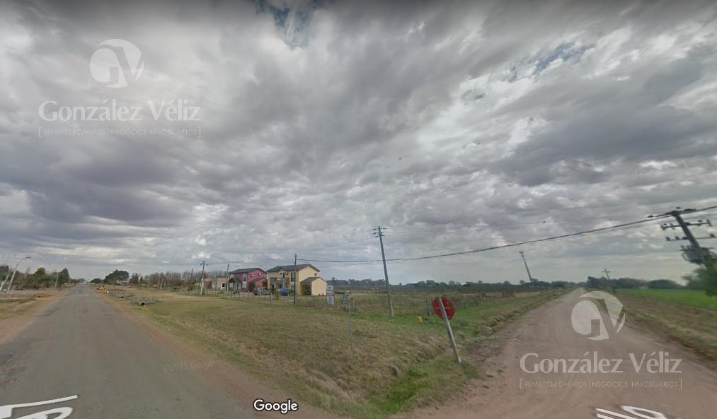 Foto Terreno en Venta en  Carmelo ,  Colonia  Ruta 97 entre Las Tunas y Chile