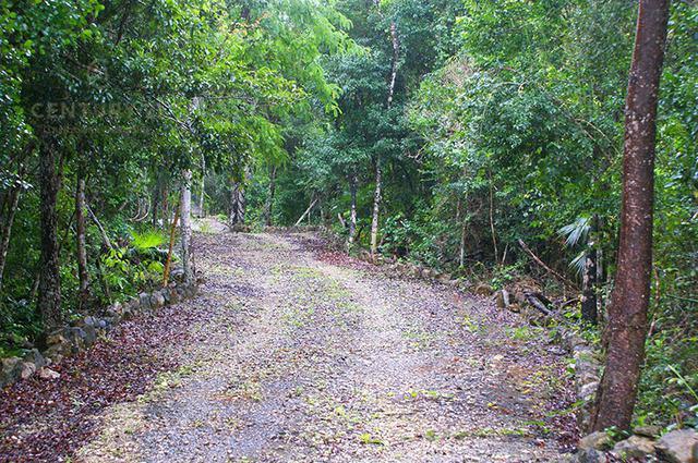Tulum Land for Sale scene image 10